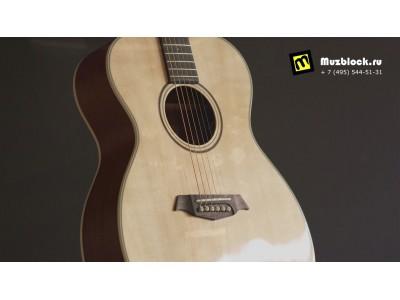 PARKWOOD S22GT - обзор фолк гитары